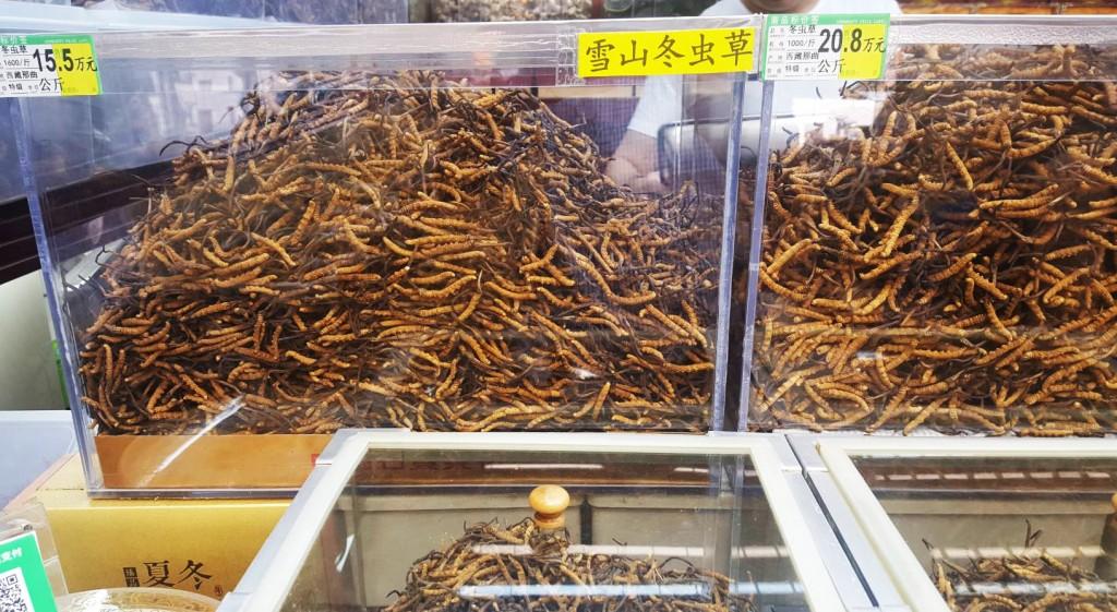 Los gusanos, la lombrices y los ciempiés también son un plato a degustar en China.